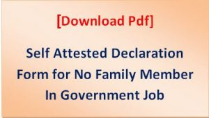 No Family Member In Government Job Declaration Form Pdf
